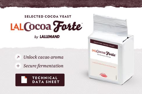 Cocoa forte